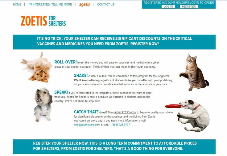 zoetis pharmaceutical company Zoetis incis a developer, manufacturer and marketer of veterinary vaccines and medicines in the united states and worldwide the company is based in parsippany, nj and carries a zacks rank #2.