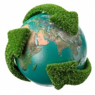 Ecologia y ecologismo. Diferencias que hay entre la ecología y el ecologismo.