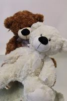 Teddy Bears, Valentines - Super Floral Distributors - Decor, Floral accessories and Crafters accessories in Cape Town