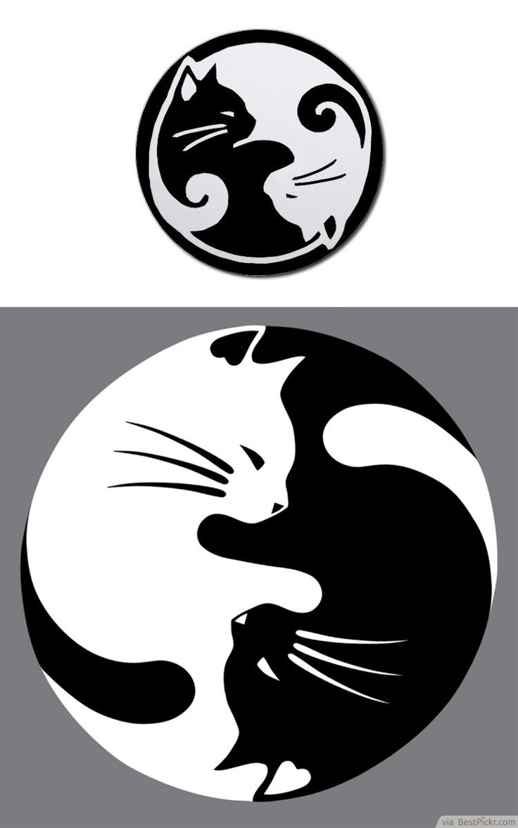 Yin Yang lucky cat tattoo - this would be nice with a watercolor wash instead of black