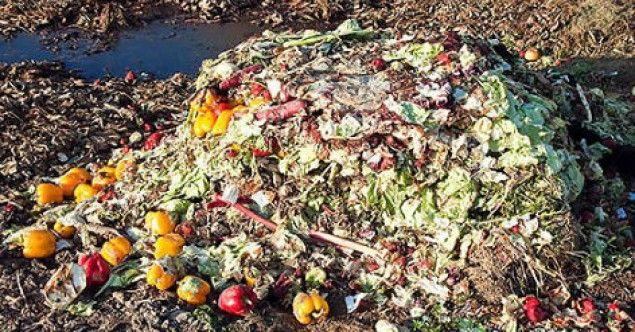 """Aproveitando as comemorações do Dia Mundial do Meio Ambiente, o PODE MORRER DE FOME.NÃO DAMOS E SE PUDER AINDA TIRAMOS MAIS.diretor executivo do Programa das Nações Unidas para o Meio Ambiente (Pnuma), Achim Steiner, chamou atenção para uma questão pouco tratada quando se pensa em preservação ambiental: o desperdício de alimentos e o impacto disso no mundo. """"Um terço de todos os alimentos produzidos no mundo a cada ano, ou cerca de 300 milhões de toneladas, é jogado no lixo."""