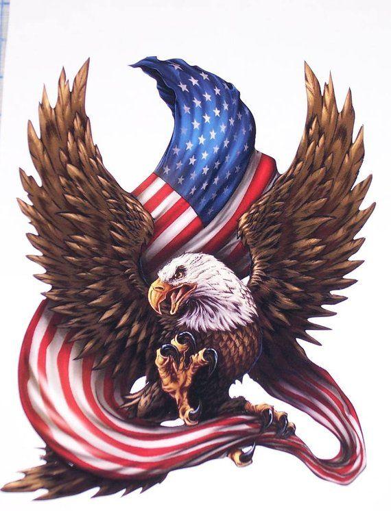Bald Eagle Holding AMERICAN Flag RV motorhome Wall Window Graphic