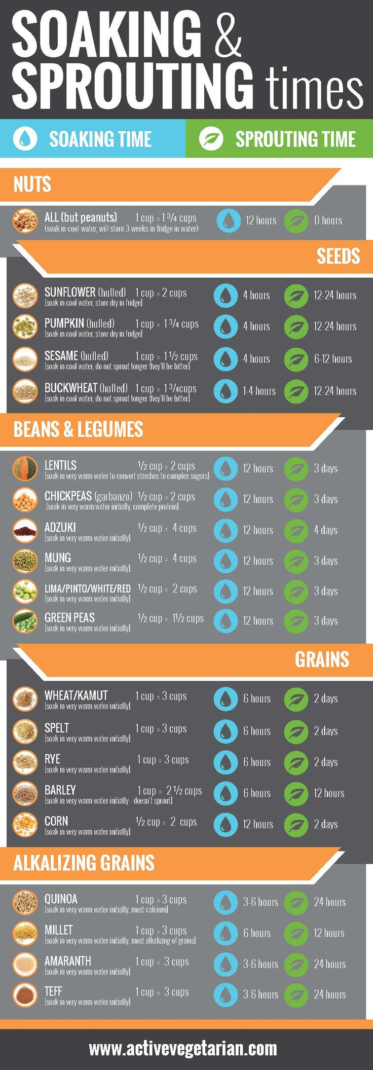 Active Vegetarian Sprouting Chart