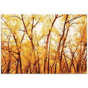 Fall wall art is a great way to elevate the look of your home. Whether it be colorful fall leaves, cute orange pumpkins or beautiful cornucopias. You can effortlessly make your home fall worthy by using several pieces of #autumn wall décor throughout your home. Do this with fall wall art, fall wall wreathes, fall wall clocks and even fall canvas art to create a warm and inviting #fall paradise.   Landscape Photography 'Fall Trees' by Meirav Levy - Autumn Nature Art