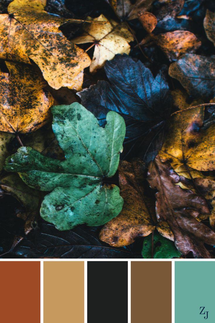ZJ Colour Palette 161 #colourpalette #colourinspiration