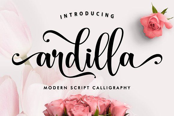 Ardilla by MERCURIAL on @creativemarket
