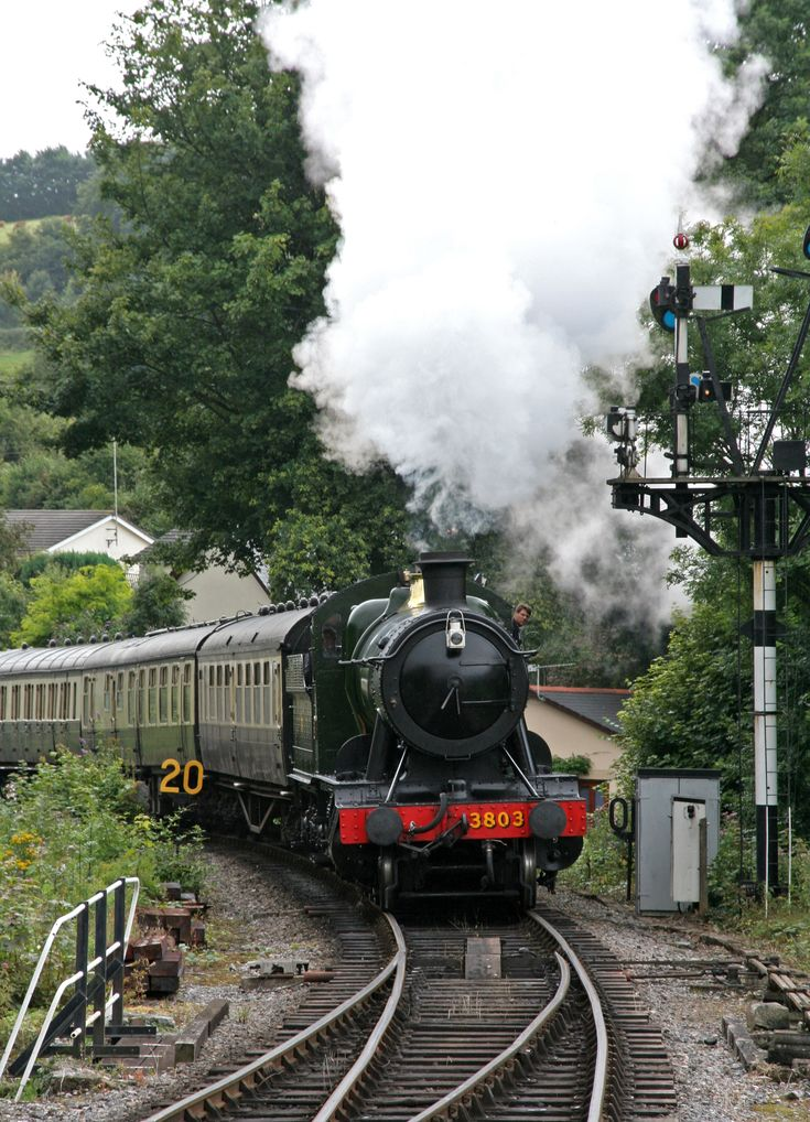"""South Devon Railway: """"This is one of the lovely dollops of nostalgia that Devon is good at. The scenic branch of the Great Western Railway which runs along the River Dart was axed by Dr Beeching in 1958 but only 11 years later it was reopened and is now run by a charitable trust."""" Slow Travel South Devon & Dartmoor; www.bradtguides.com"""