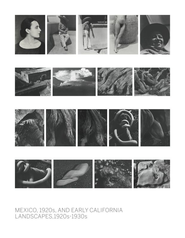 Edward Weston Auction / Extract from the auction catalogue