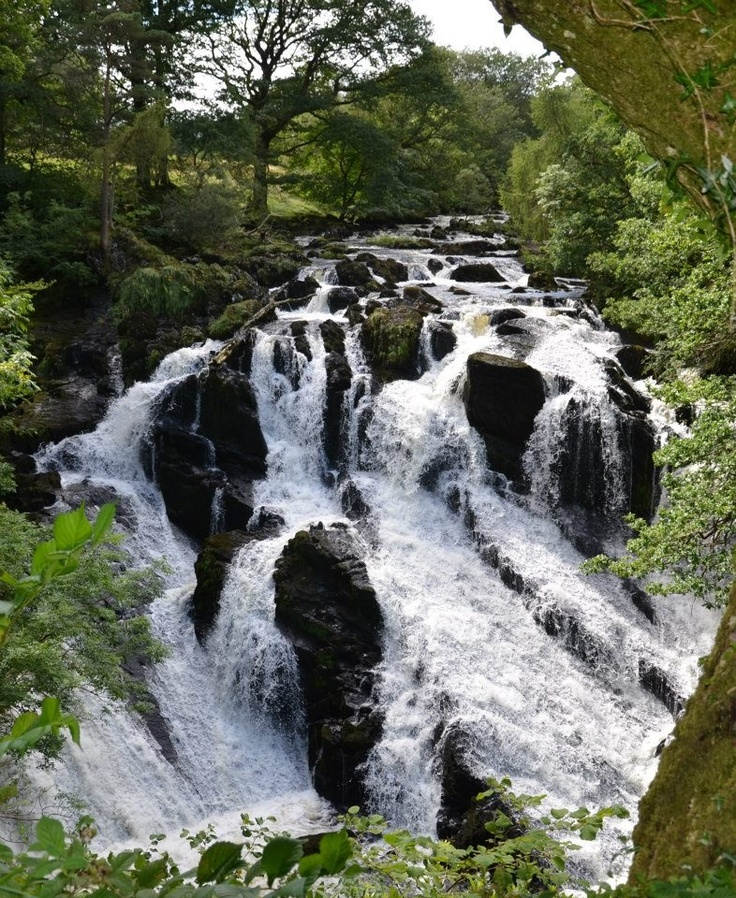 waterfalls (Swallow Falls)