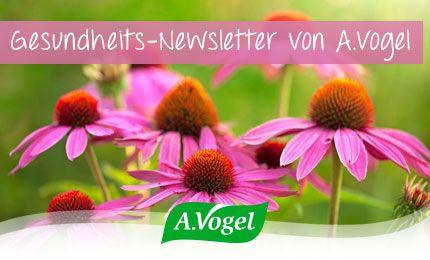 Neue Borreliose-Therapie: Behandlung ohne Antibiotika | A.Vogel