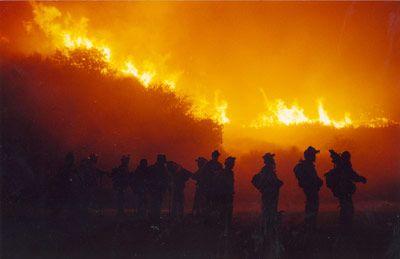wildland firefighter -