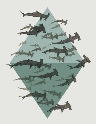 Do you love Hammerhead Sharks? Yes you do!