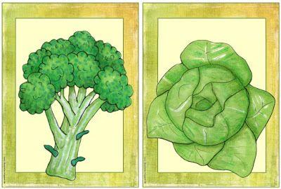 """Englisch in der Grundschule: Flashcards/Wordcards """"vegetables"""" (Ergänzungen)"""