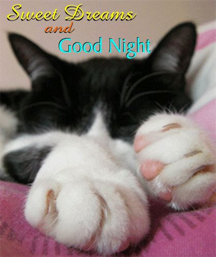 Sweet Dreams For You! Free Good Night ECards, Greeting Cards | 123 Greetings