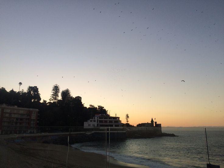 In the evening. Vina Del Mar