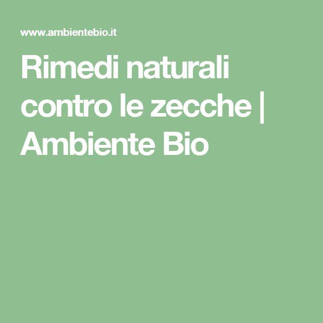 Rimedi naturali contro le zecche | Ambiente Bio