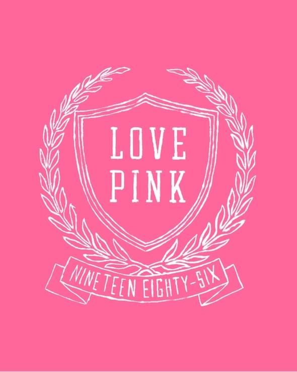 62 best Love pink&lt-3 images on Pinterest | Victoria'-s secret pink ...