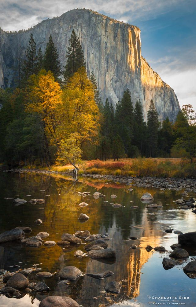 ~~El Capitan, Fall | first light on the Merced River, Yosemite National Park, California | by Charlotte Gibb~~