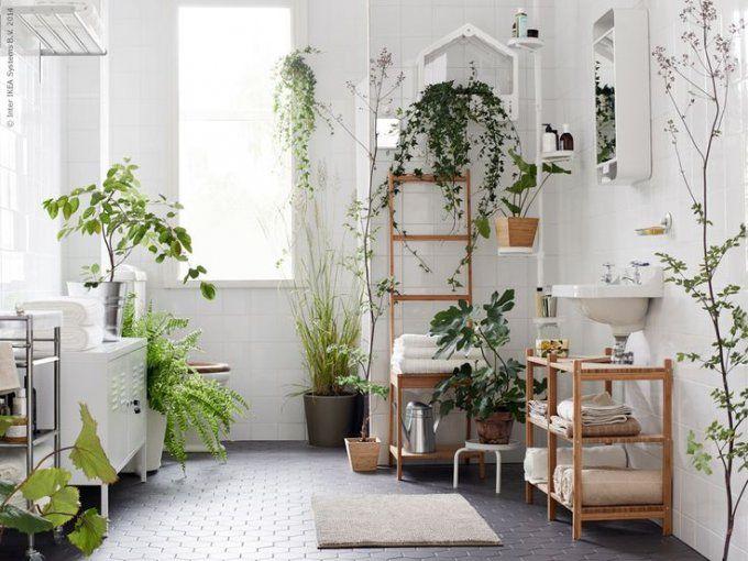 Une salle de bain verdoyante
