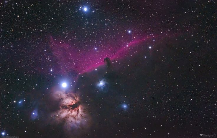 """""""The Horsehead Nebula - Ledge Point Edition"""" by Will Vrbasso. My second attempt at the famous Horsehead Nebula (and other miscellaneous astro objects :). Taken near Ledge Point, Western Australia.  This shot was with an unmodified stock Canon EOS6D DSLR in the warm southern hemisphere nights"""