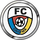 Vorschau auf den 8. Spieltag der Wernesgrüner-Sachsenliga zwischen dem FC Grimma (3.) und den Kickers 94 Markkleeberg (11.) am Samstag, 18.10.2014 um 15.00 Uhr im Stadion der Freundschaft, Grimma