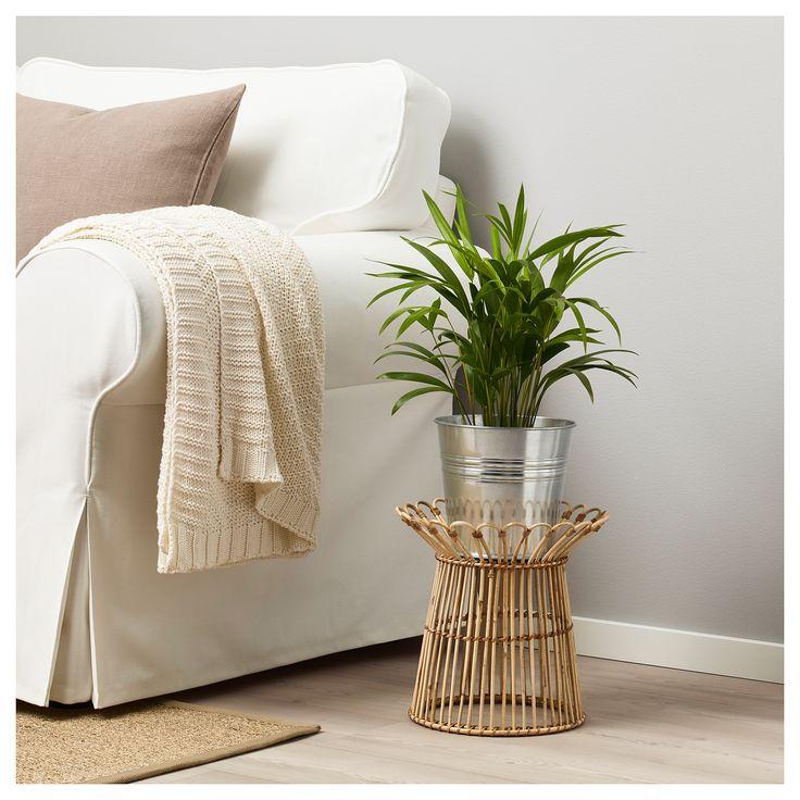 Furniture and Home Furnishings (con immagini