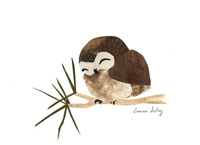 Little Owl by Lauren Soloy
