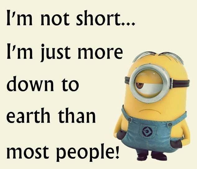 Im Not Short Funny Quotes Quote Crazy Short Funny Quote Funny Quotes Funny  Sayings Humor Minions