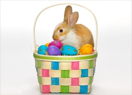 ¿Qué significa el Conejo de Pascua? - QUO mx