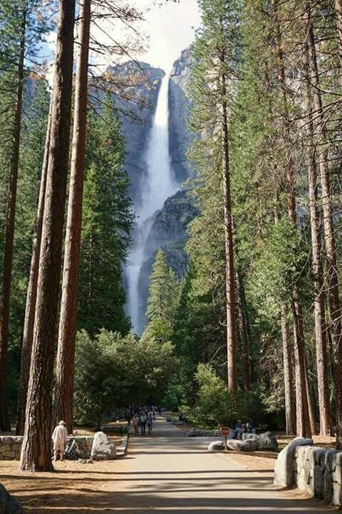 Parcul Yosemite, S.U.A.
