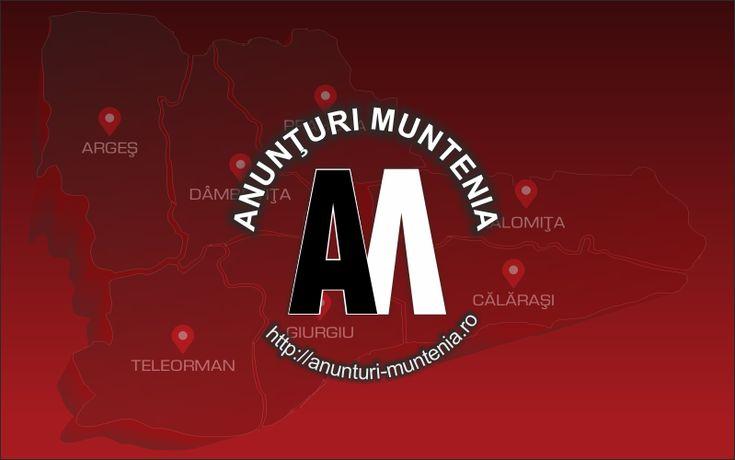AFACERE PROPRIE!!! – Anunturi Muntenia