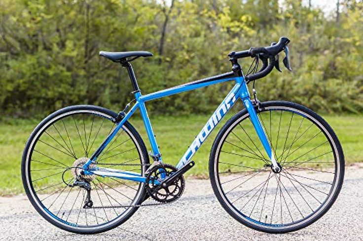 Schwinn Fastback Al Claris Performance Road Bike For Beginner To