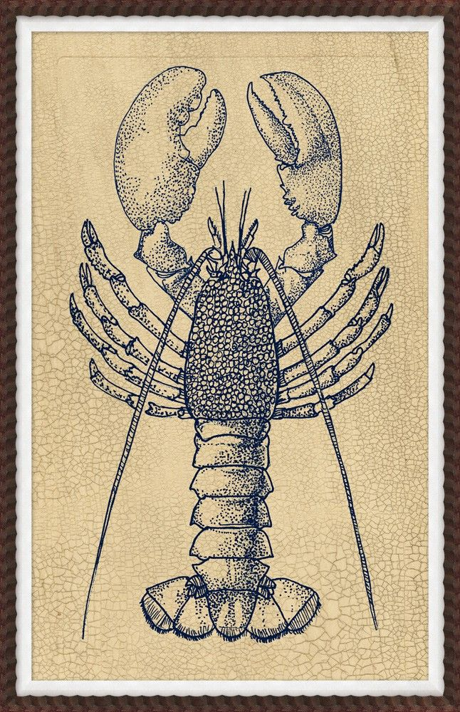 RESELECT 25X39 Indigo Lobster Study 1 - Coastal - Our Product