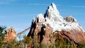 Expedition Everest - Animal Kingdom.  Montanha-russa temática, com uma deliciosa queda e surpresinhas durante o percurso que dão um toque especial à atração.