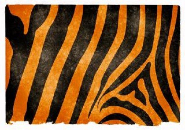 tijgerstrepen grunge papier | Download gratis Foto's