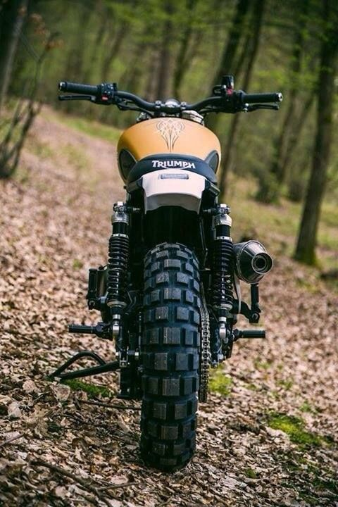cafe racers, trackers and scrambler