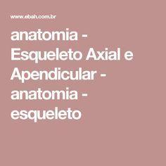 anatomia - Esqueleto Axial e Apendicular - anatomia - esqueleto