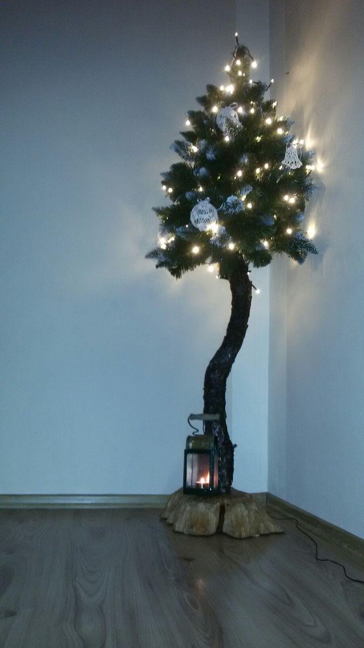 choinka na pniu klasyka świąteczna