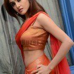 Sony Charishta Hot Latest HD Wallpapers & Images