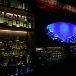 Photo of Sea Witch - Brooklyn, NY, United States. Fish tank