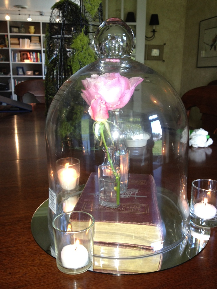 Beauty and the beast inspired library rose under for Rose under glass