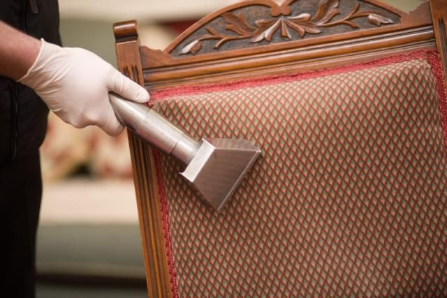 Upholstry Cleaning #upholstrycleaninginwilliamsburg #carpetcleaninginwilliamsburg
