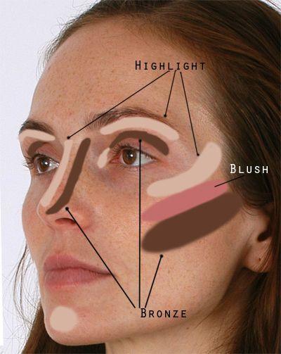 Highlighter, bronzer, blush (diagram)