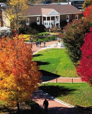 Western New England University: what it takes to be admitted