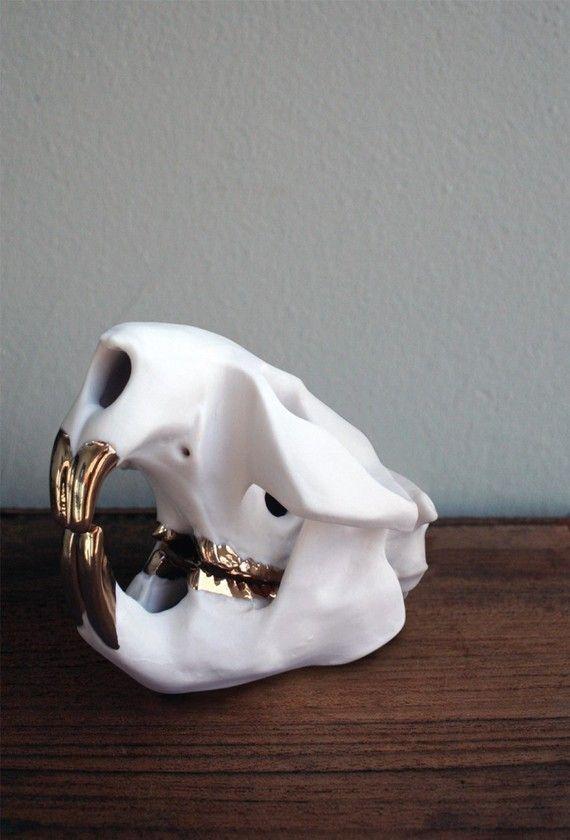 Porcelain Beaver Skull with 16k gold luster teeth - gorgeous!