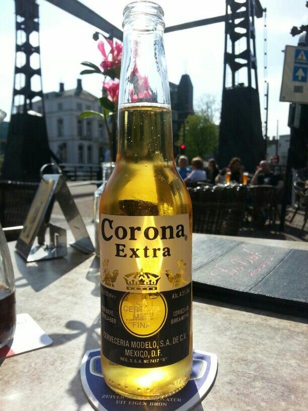 Corona extra 4,5% 33cl