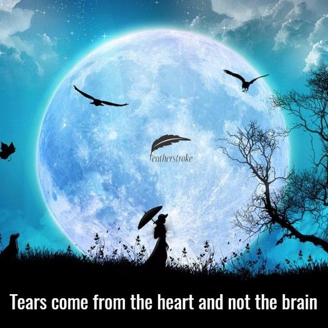 Tears come from the hears and not the brain  #makeup #instamakeup #cosmetic #cosmetics #TFLers #fashion #eyeshadow #lipstick #gloss #mascara #palettes #eyeliner #lip #lips #tar #concealer #foundation #powder #eyes #eyebrows #lashes #lash #glue #glitter #crease #primers #base #beauty #beautiful
