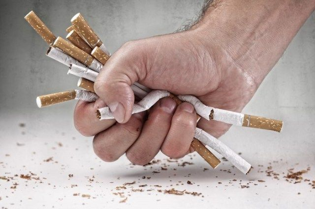 Smoking is unhealthy for the bones in addition to for the guts and lungs.