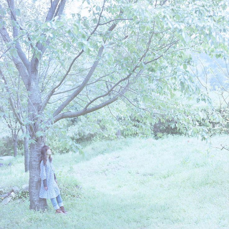 """Yukihiro Yoshida : look """"inner forest"""" http://digianalogue.com/photoblog/archives/2010/05/look_inner_forest.php #YukihiroYoshida #Photography"""