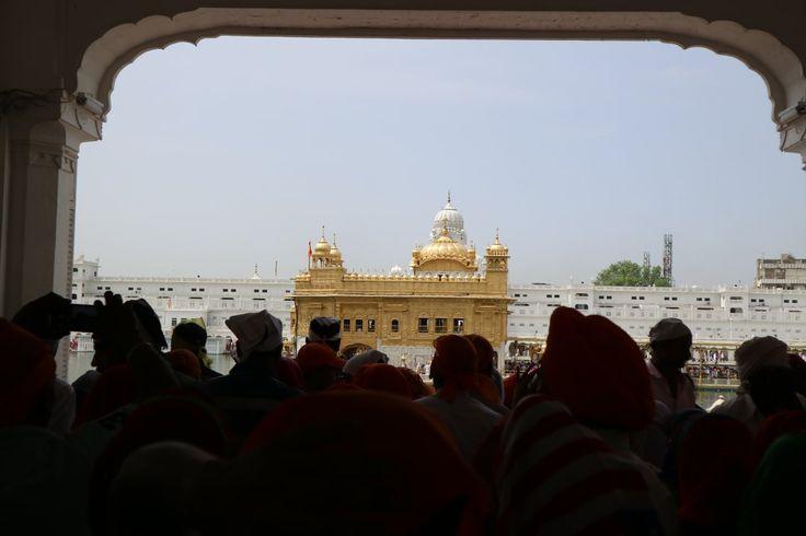 Один из самых почитаемых храмов Индии - Золотой храм в Амритсаре  Больше интересных рассказов и фотографий Индии у нас в блоге http://trip-dream-live.ru/category/india/  #tripdreamlive #traveling #трипдримлив #travelling #путешествуймечтайживи #travel #traveler #travelphotography #traveller #travels #traveltheworld #travelblog #Индия #India #Амритсар #Amritsar #Пенджаб #Punjab